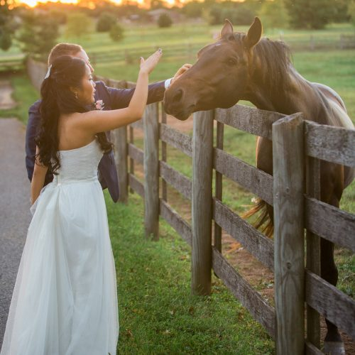 rustic elegant bride and groom with a horse at Sterlingbrook Farm farm in Pittstown, NJ at sunset by wedding photographer Laura Billingham